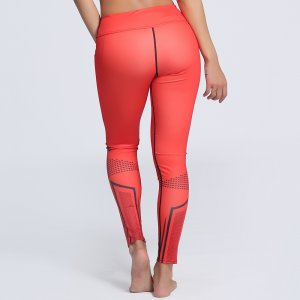 Sport Fitness Yoga Workout Leggings